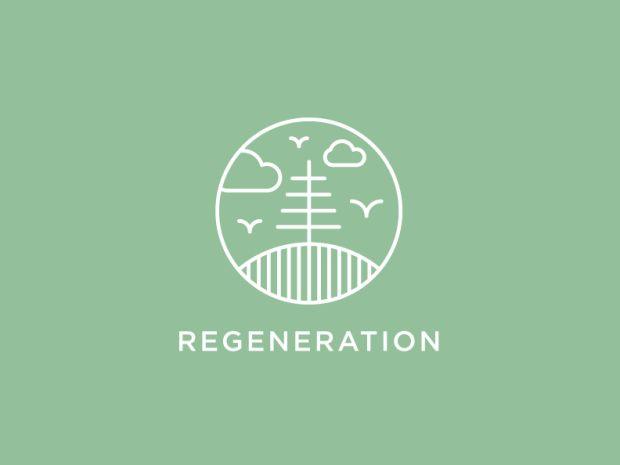 regeneracao